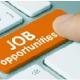 Government Job Vacancies 2021